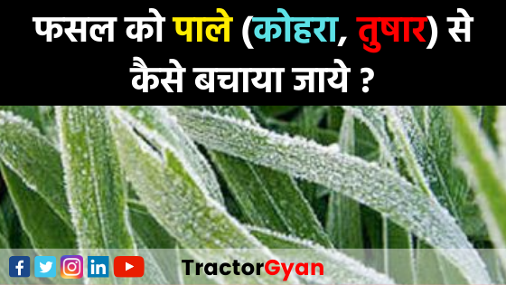 https://images.tractorgyan.com/uploads/1577517720-How-to-protect-the-crop-from-frost-tractorgyan.png