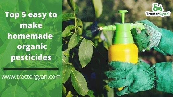 Easy to Make Homemade Organic Pesticides