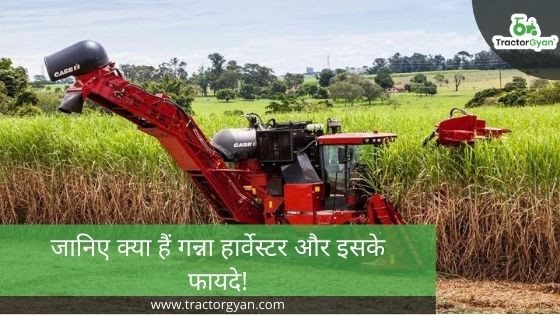Everything You Need to Know About Sugarcane Harvester