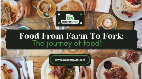 """""""From farm to fork: The journey of your food!"""""""