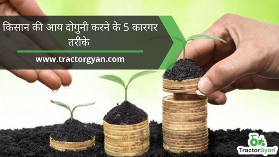 Top 5 Absolutely Effective Ways to Double Farmer's Income