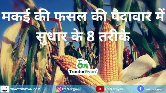 8 Ways To Improve Corn Crop Yields