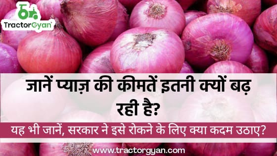 https://images.tractorgyan.com/uploads/1603699983-onion-prices.jpeg