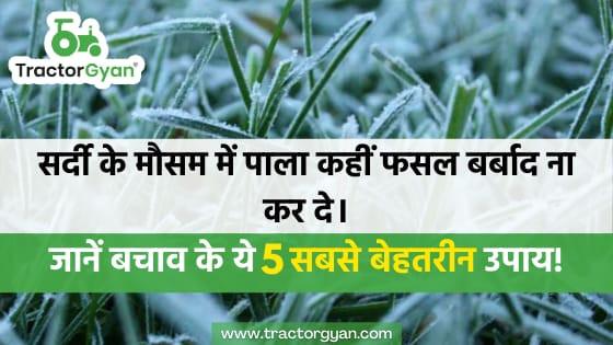 सर्दी के मौसम में पाला कहीं फसल बर्बाद ना कर दे, जानें बचाव के ये 5 सबसे बेहतरीन उपाय।