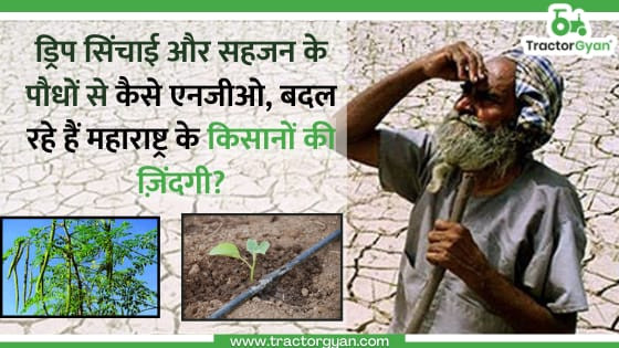 ड्रिप सिंचाई और सहजन के पौधों से कैसे एनजीओ बदल रहें है महाराष्ट्र के किसानों की ज़िंदगी?