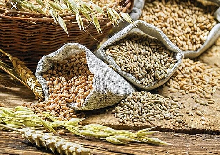 How to protect wheat at home from insects,some surefire ways of storing grains