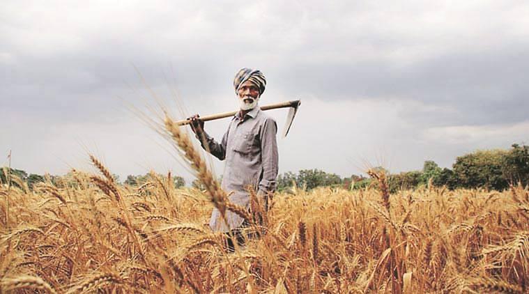 https://images.tractorgyan.com/uploads/punjab-farmer-759.jpg